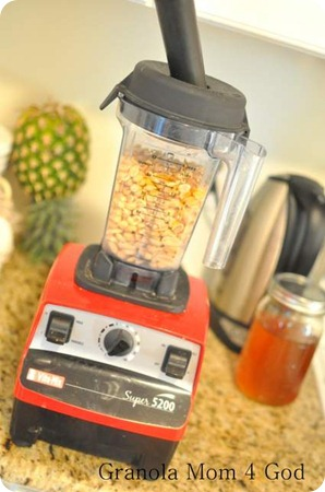 Vitamix with tamper and peanuts