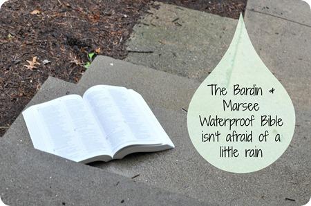 rain bible