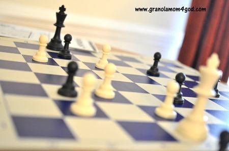 vinal chess board