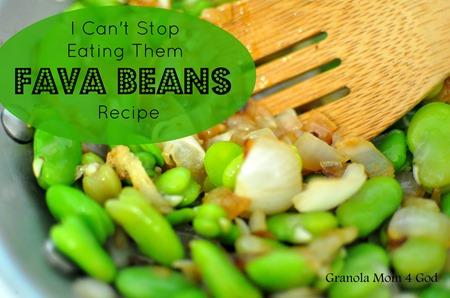 Fava Bean Recipe