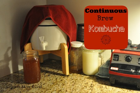continuous brew kombucha tutorial