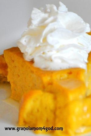 vitamix pumpkin pie up close
