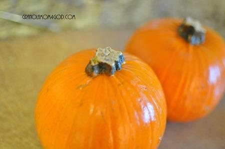 vitamix pumpkin pie