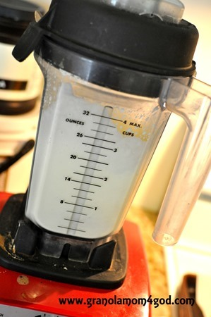 vitamix whipping cream