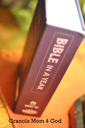 Bible in a year vertical