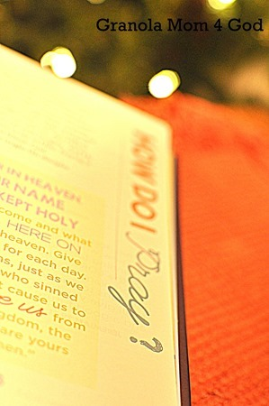bible in a year how to pray
