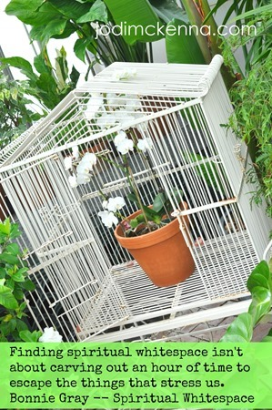 spiritual whitespace flower in cage