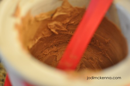 coconut milk no sugar ice cream in mixer